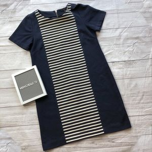 J Crew Womens Size 10 Navy Blue & White Dress
